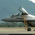 Как следует из недавнего выступления главкома ВВС Малайзии в минобороны страны, замена парка МиГ-29Н отнюдь не является приоритетом для правительства, и ВВС уже рассматривают возможность лизинга б/у Gripen в случае отсутствия финансирования новых закупок.